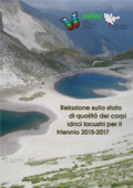 laghi 2015 2017 ico